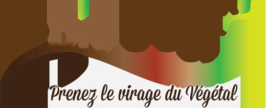 logo-virage